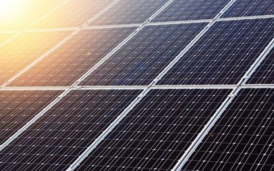 Bring Your Clean Tech Startup Ventures To Canada